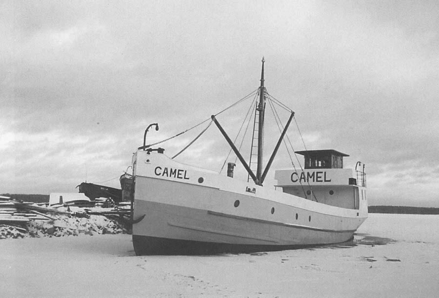 m/s Camel